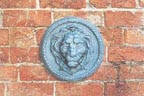 Lion Wall Mask - Round